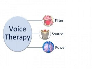 Treatment Of Voice Disorders: The Global Voice Therapy Model (GVTM) For Children And Adults