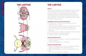 osmo pocket manual pdf